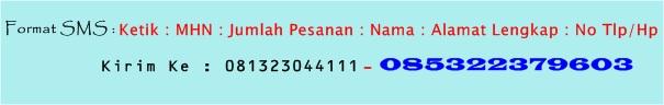 format pemesanan MHN